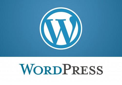 Belajar Bisnis Melalui CMS Wordpress